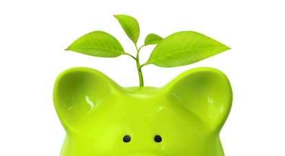 Green piggy bank with plant and coin stacks